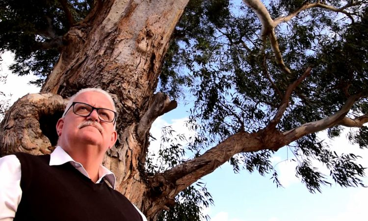 A fierce debate over the removal of a 300-year-old redgum to make way for a tollway on-ramp has highlighted the need for smarter infrastructure planning. State Member for Eastern Metro Rod Barton, whose electorate traverses the site of the proposed toll road, says the rush to deliver the $15.8 billion North East Link is not taking advantage of the benefits of smart infrastructure planning.