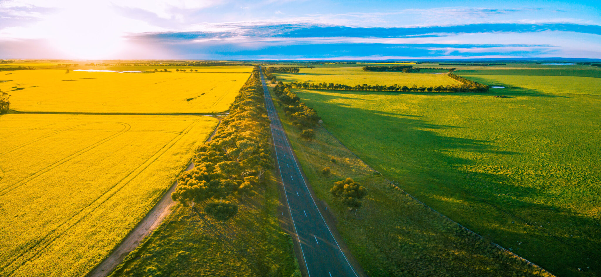 Victorian farmers have had to manage a range of issues around the coronavirus as logistics and supply chains have been disrupted